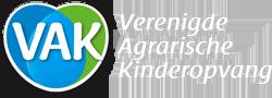 logo vak kinderopvang koerine scheerwolde